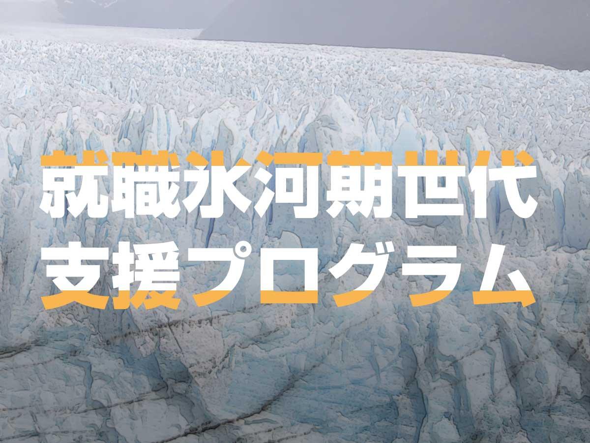 就職氷河期世代支援プログラムは何をしてくれるのか?
